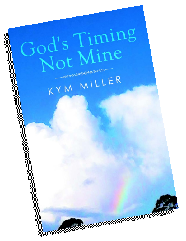 God's Timing Not Mine - book cover